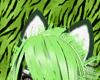 Selva Tigre Ears