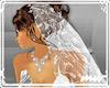 !Wedding veil white lace