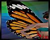 Butterfly Wings V3