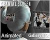 GHQ` 3013|Cranial|Scrn|W