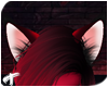 Rox | Ears