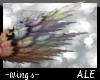 Aurora Borealis Flight