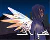 Celestial Cherub Wings