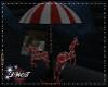 D- Attic Carousel