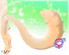 .v. Pastella O Tail 1 MF