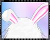 T » Kawaii Bunny Ears