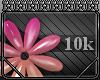 [RJ] Token: 10k