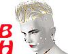[BH]Albino Gold Feux Hwk