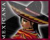 [V4NY] !Mexicana! MNight
