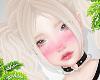 d. wilo blonde