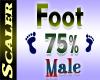 Foot Resizer 75%