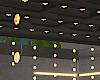 Pergola/Lights