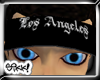 Los Angeles Visor