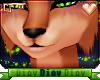 *D* Lion Cheek Fur