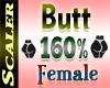 Butt / Hip Resizer 160%