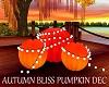 Autumn Bliss Pumpkin Dec
