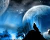 cuadro lobos 2