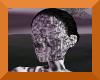 Transparent striped head
