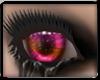 ~RM~ Haunte Eyes