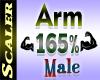 Arm Resizer 165%