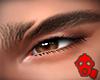 X.GR.eyebrows 3