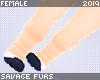 . Maus | paws