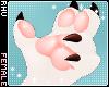 . Kitten | Claws