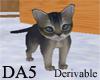 (A) Kitten