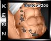 *kn*[MP] Torso Tat
