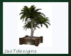 Potted Palm Tree Planter