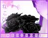 [HIME] Laven Rose R