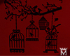 MayeBird Cage