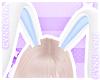 🌠 Bunny Ears Sky