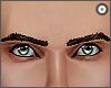 d| Brown Eyebrows