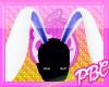 *PBC* Blue Bunny