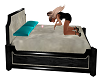 Love, Kiss Bed
