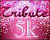 Tribute the Princess 5k
