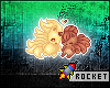 R} My 1st Pokemon Badge