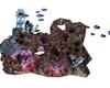 # 31 coral reef