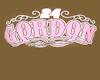 Tan Jeff Gordon Tee