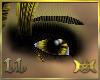 Isis Eyes