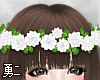 Y' White Flower Crown