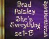 Brad Paisley She's every