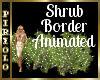 Shrub Border Animated