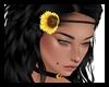 Sunflower Queen Flower