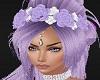 Purple White HEad Flower