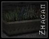 [Z] TAL Herbplanter V2