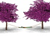 NTH -amimed tree