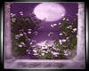 F|Magic MoonLight Pic 4