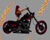 Gwens Ride